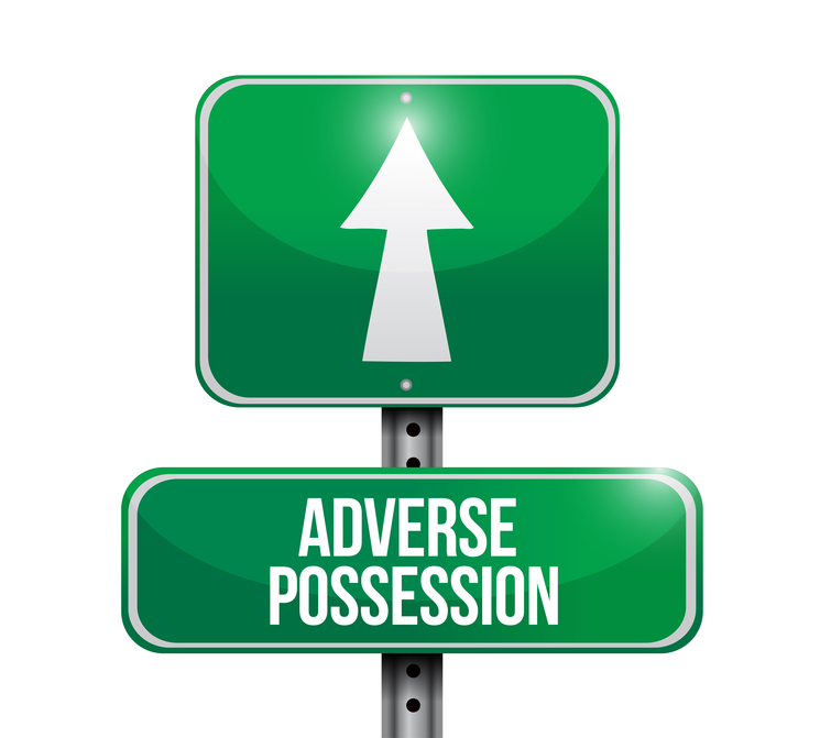 adverse possession road sign illustrations design over white