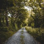 Highways to Summer Cottages – A Primer
