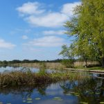 New Hampshire Wetlands Rules Have Changed
